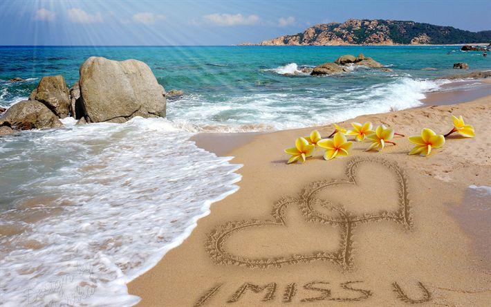 Télécharger fonds d'écran Vous me manquez, mer, voyage, été, plumeria