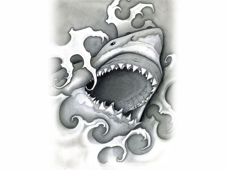shark tattoos brought to you by free tattoo ideas