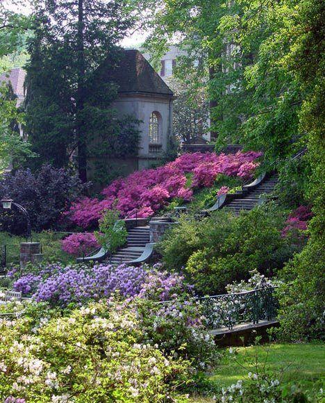 L' effet de masse des fleurs roses contre l'escalier est superbe.
