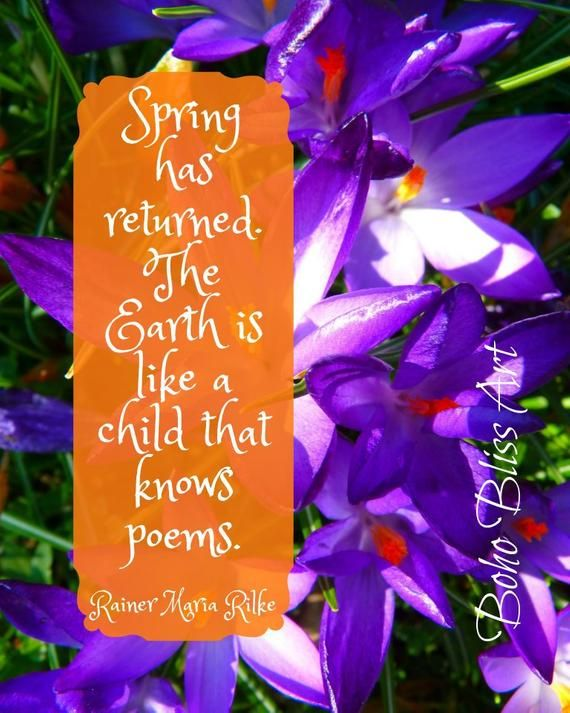 quotes about life being hard Spring has returned. The Earth is like a child that knows poems. Spring Quote Wall Art | Flower Art Print | Instant Download 11
