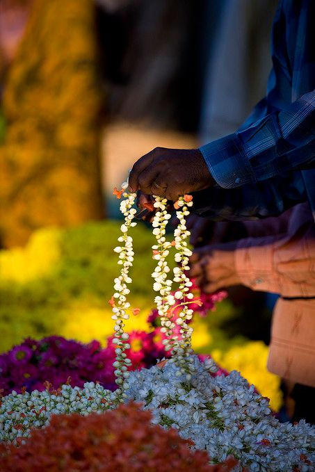 Mysore Flower Market - India