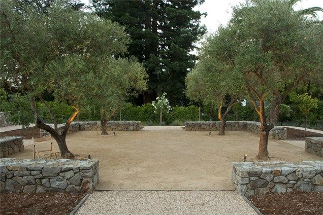 Four Olive Trees With Dg Underneath Turf To Garden