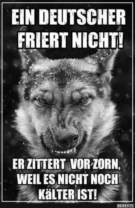 Ein Deutscher friert nicht! | Lustige Bilder, Sprüche, Witze, echt lustig – Patrick Wolf