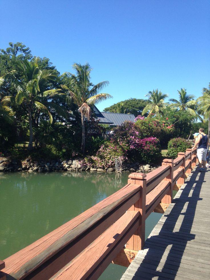 Denarau Island Fiji 33 best Resort Views