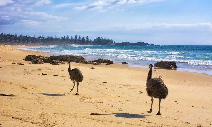 Eurobodalla - South Coast NSW