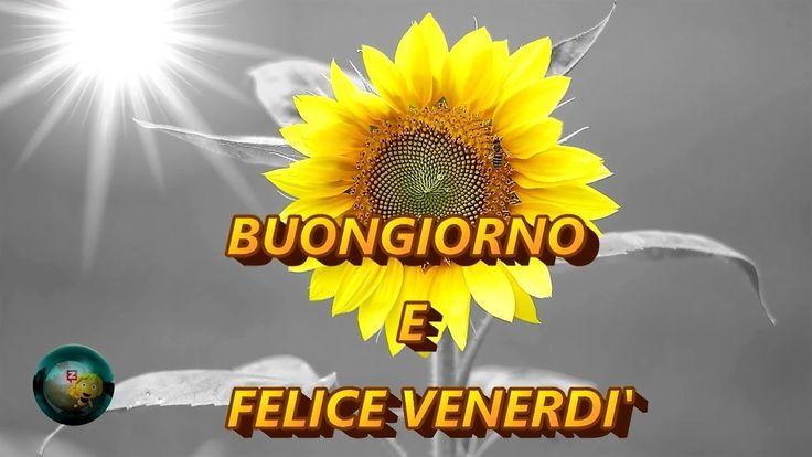 Buongiorno e Felice Venerdi'