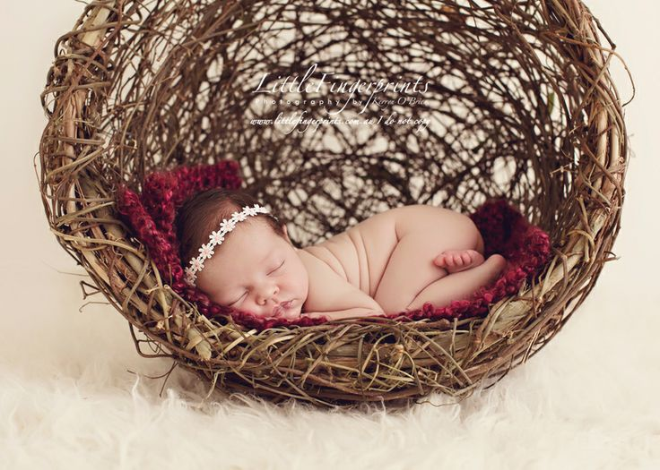 Newborn Photography Hanging Props