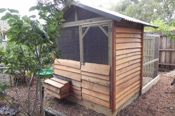 Radial Sawn Timber Chook House designed & built by Yummy Gardens, Melbourne