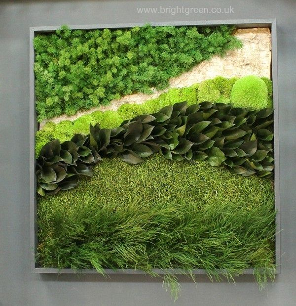 Preserved Moss Art mixed with Preserved Ming Fern, Tiki Fern and other foliages