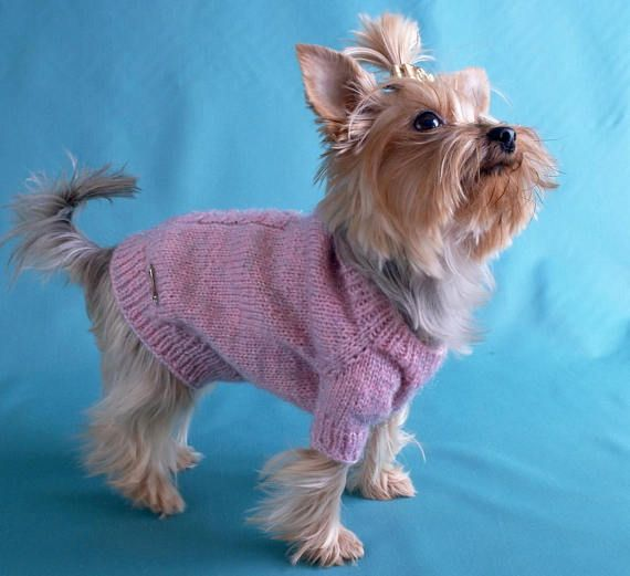 Yorkshire Terrier Clothes coat pet  jumper puppy XS Outfit small Pet clothes Dog knit cap sweater set Dog clothing Puppy sweater