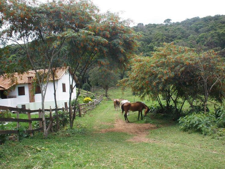 MAIS FOTOS LINDAS ———Fazenda Recanto do Paraíso