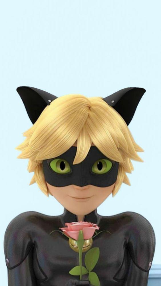 Miraculous Cat Noir