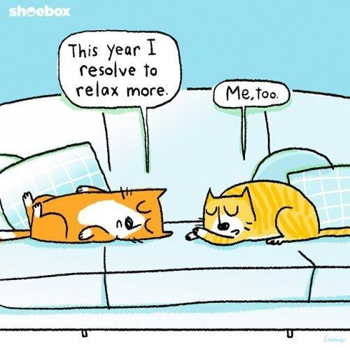 If Animals Made New Year's Resolutions...