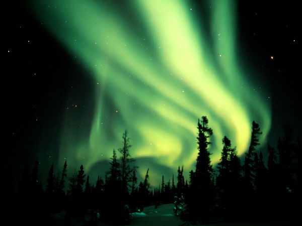 Yellow-Green Aurora  Photograph by Norbert Rosing    An aurora borealis sends ribbons of yellow-green light through the sky over northern Canada.