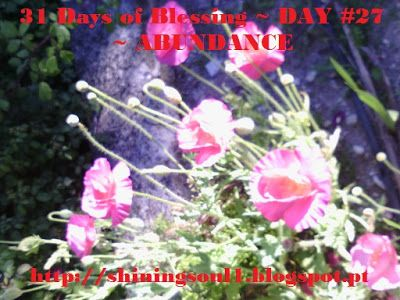 ShiningSoul: Day #27 ~ 31 Days of Blessing: ABUNDANCE /  Dia #2...