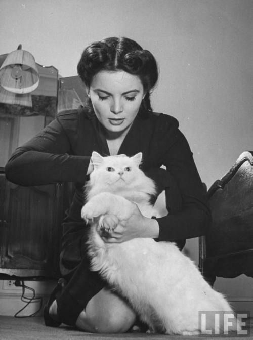 A woman demonstrating the proper way to safely pick up an excited cat in the event of first aid being required due to an air raid.  #WWII  #Cat