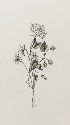 Image result for wildflower deer antler drawing