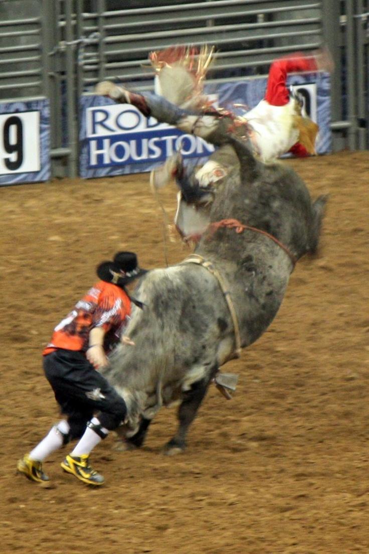 Weeeeeeeeeeeeeeeee  Houston Livestock Show and Rodeo   Bull Riding
