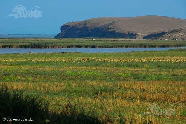 Capul Dolosman este o faleza calcaroasa ce se intinde pe o distanta de 3 km , cu inaltimea maxima de 29 m, fiind singura faleza stancoasa din zona litorala a Romaniei.  http://www.info-delta.ro/delta-dunarii-17/capul-dolosman--96.html
