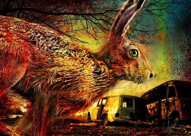 watership down paper Original synopsis  watership down has a total of 496 pages which are papers from writer 'richard adams' a phenomenal worldwide bestseller for over forty years.