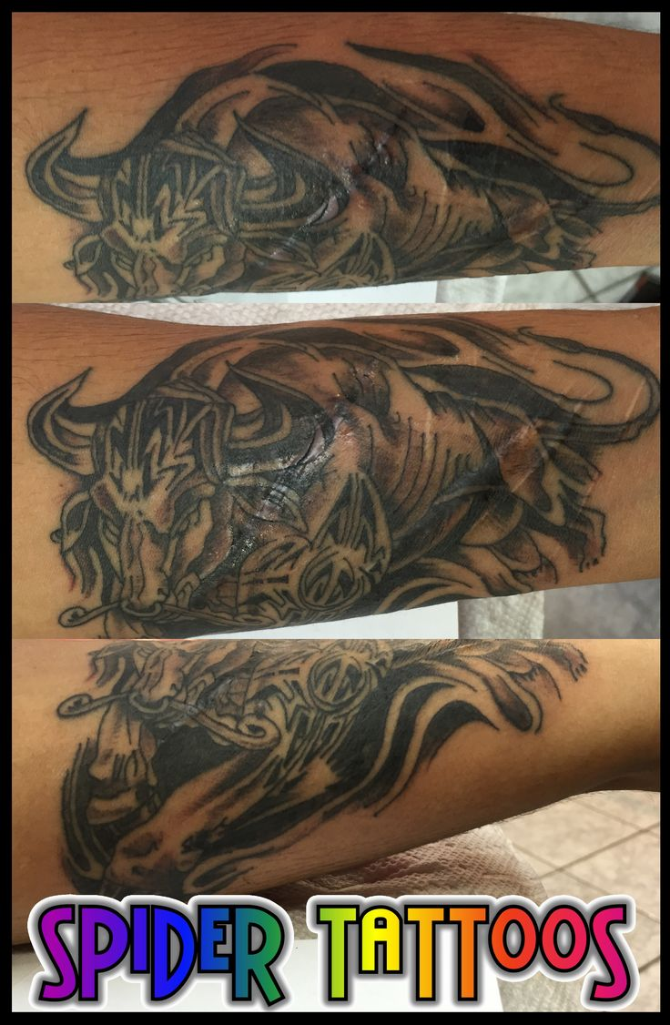 Taurus Bull Tattoo by Spider  #tattoo #tattoosbyspider #needlesink #taurustattoo