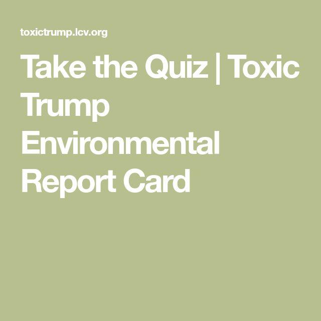 Best  Environmental Report Ideas On   Environmental