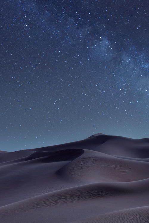 Desert by Shadi Nassri
