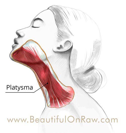 Platysma Natural Neck Lift | Beautiful on Raw