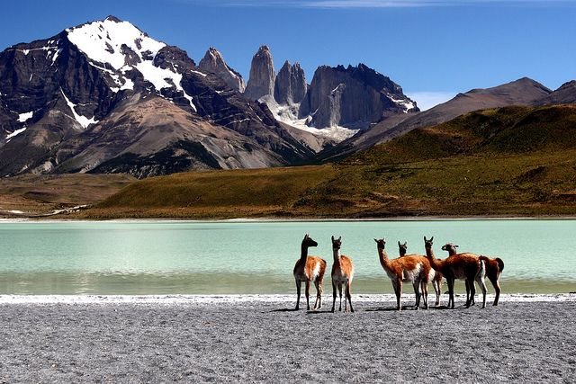 Torres del Paine National Park, Magallanes y la Antártica Chilena