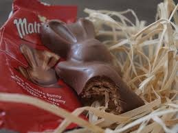 Malteaster bunnies :)