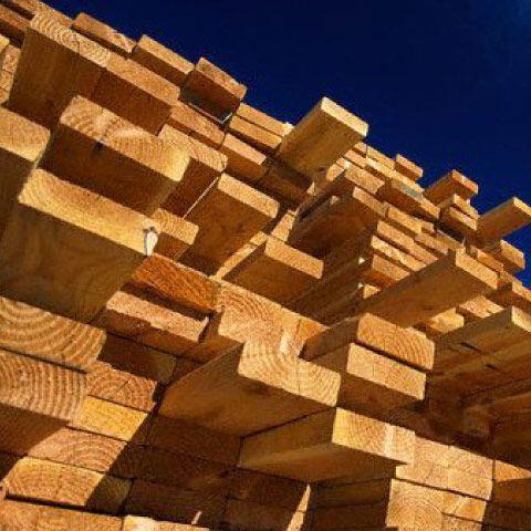 Oltre 1000 immagini su legno attrezzi su pinterest for Casanova legnami