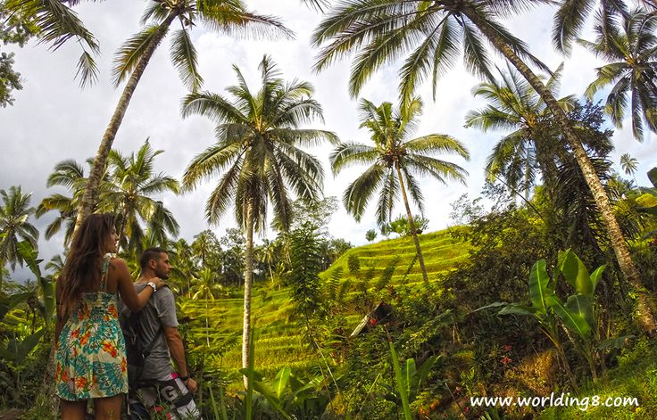 disfrutando de las #terrazasdearroz de #ubud