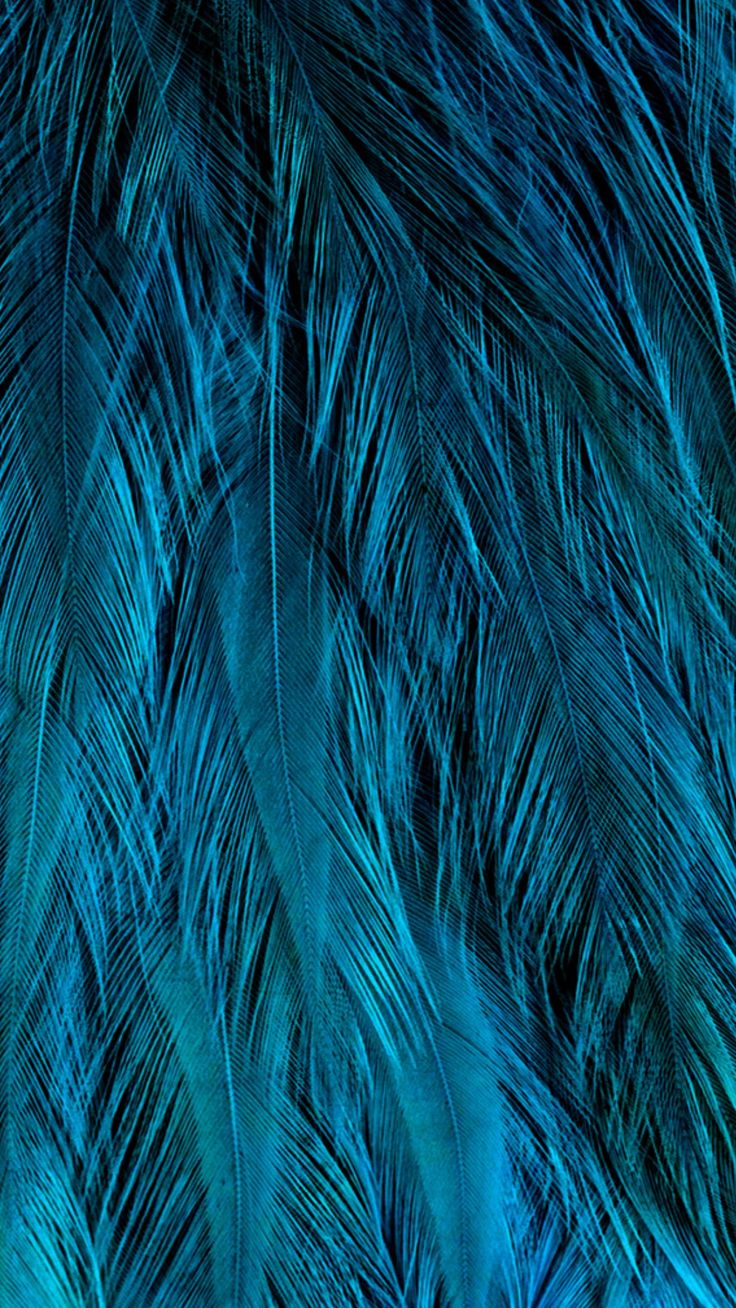 best turquoise images on pinterest art classroom blue green