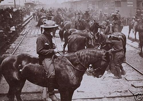 """Theodore Roosevelt's """"Rough Rider's Arrival in Tampa Florida C 1898"""