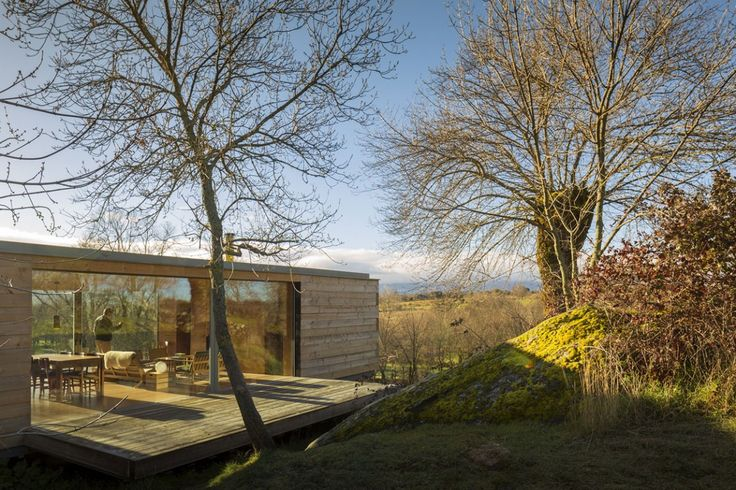 Transparency B house Detached Single Storey House Infused with Golden Rays of Light