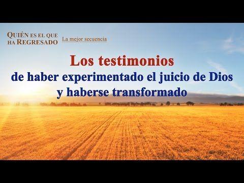 (VIII) - Los testimonios de haber experimentado el juicio de Dios y haberse transformado | Evangelio del Descenso del Reino