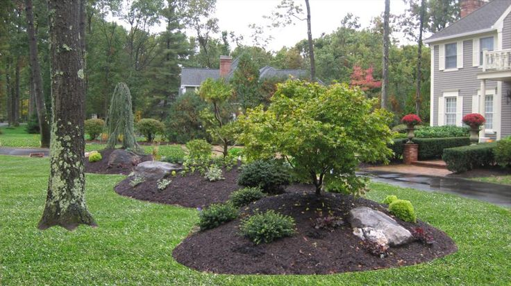 Landscaping Ideas For Pie Shaped Backyard Mystical