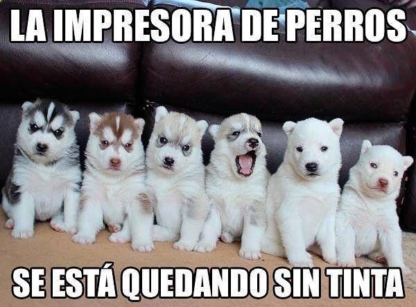 Imagenes de Humor Vs. Videos Divertidos - Mega Memeces ツ➧ http://www.diverint.com/memes-mas-divertidos-hablando-del-estimulo-infantil