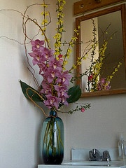 forsythia, curly willow, ti leaves, flowering quince, cymbidium orchid