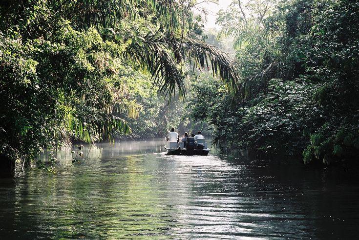 Es el río. Está en Parque Nacional Tortuguero. Se puede kayac.