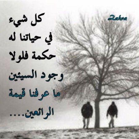 حكم عن الحياة والدنيا اقوال وامثال عن الحياة ميكساتك Ex Quotes Words Quotes