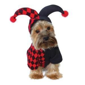 犬のコスチューム【ジョーカー】 ペット用コスチューム/ハロウィン仮装/犬服/犬の洋服
