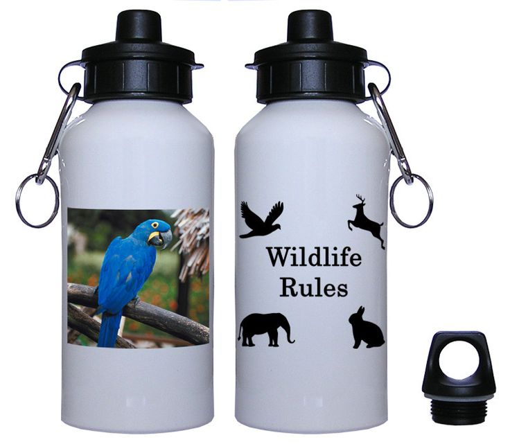 Macaw Water Bottle 6