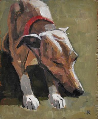 Rodgerson,Jenny Sleeping Whippet 1 Oil on board Image Size: 18 x 15cm