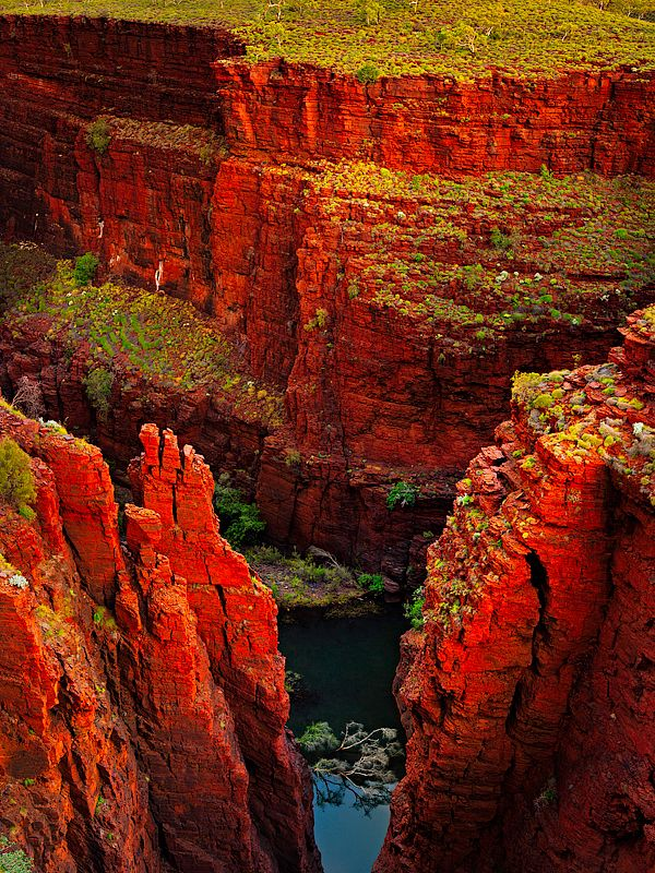 Karijini National Park (Australia). 'Hidden deep in the heart of the Pilbara, Karijini offers pools and plunging waterfalls in its remarkable gorges, a cool respite from the oppressive heat of the surrounding ironstone country. Book an adventure trip to abseil, swim, dive, climb and paddle through the gorges.' http://www.lonelyplanet.com/australia/western-australia/karijini-national-park