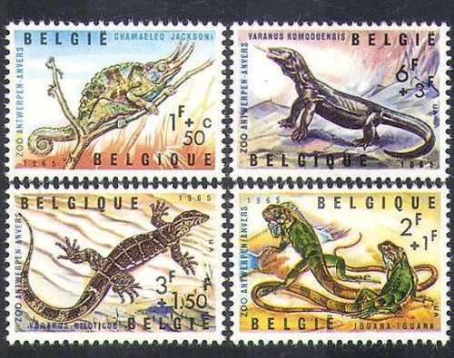 Belgium 1965, Oct 16, Reptiles of Antwerp Zoo, 4 value featuring Iguana, Komodo Dragon, Jackson's Chameleon and Nile Lizard. Komodo is one of the 17,508 islands that compose the Republic of Indonesia. The island is particularly notable as the habitat of the Komodo dragon, the largest lizard on Earth, which is named for the island. Komodo Island has a surface area of 390 square kilometres and a human population of over two thousand.