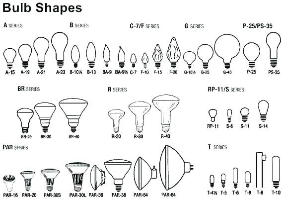Light Bulbs Base Types Bulb