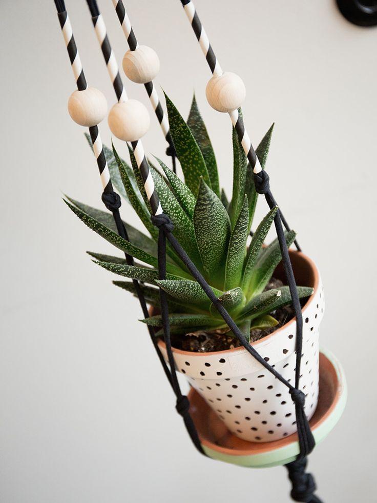 Die 25+ Besten Ideen Zu Blumenampel Selber Machen Auf Pinterest ... Blumenampel Selber Machen Hangekorb
