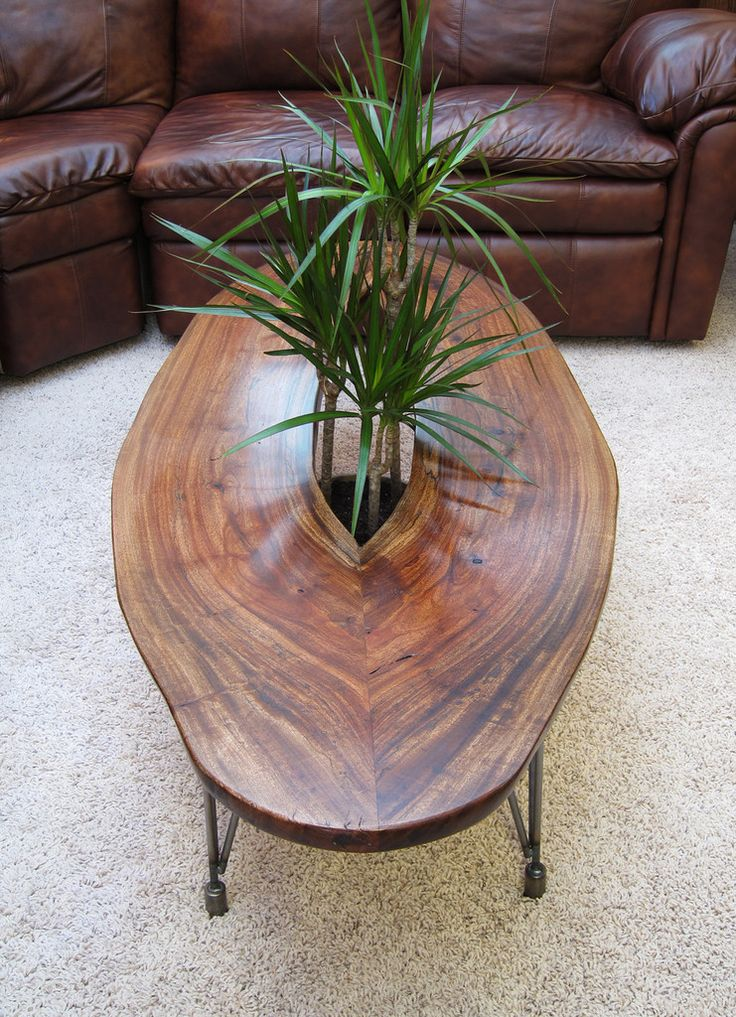slab coffee table with plant growing through