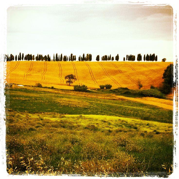 Toscana, colline e pizzetti